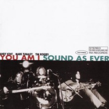You Am I – Sound As Ever