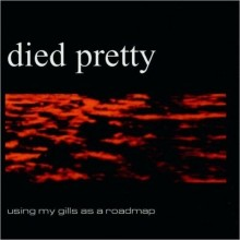 Died Pretty – Using My Gills As A Roadmap